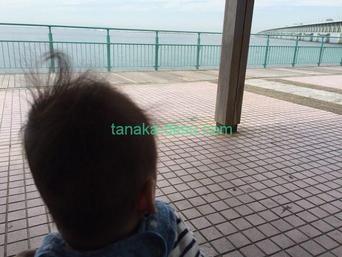 海を見る赤ちゃん